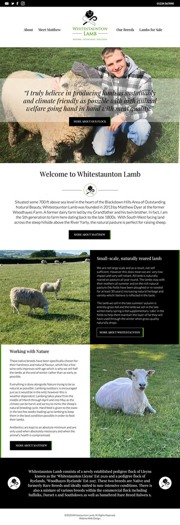 Whitestaunton Lamb Web Design